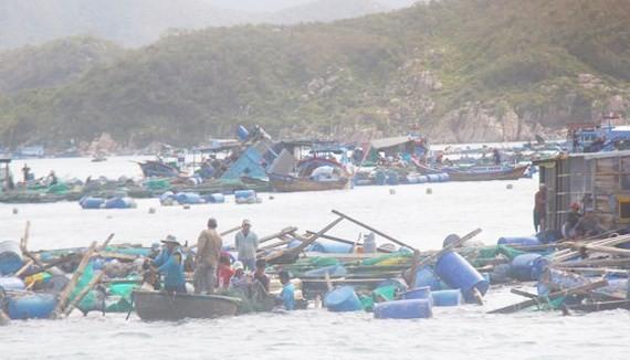 Đã có nhiều tin đồn thất thiệt về việc hồ Đá Bàn bị nứt hay hàng trăm người chết do bão số 12 ở Khánh Hòa khiến cho người dân không khỏi hoang mang