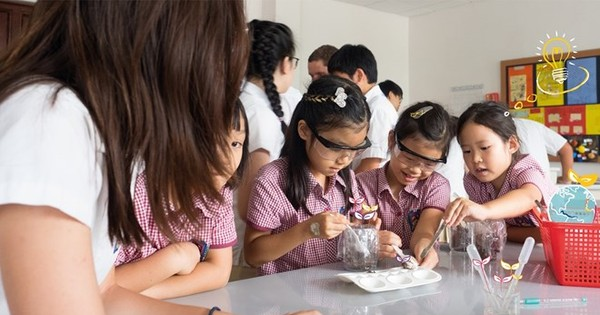 Decree 86 expected to fuel foreign investment in education