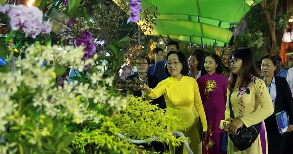 Khai mạc hội Hoa Xuân TPHCM Tết Kỷ Hợi năm 2019 | Văn hóa - Giải trí | Báo Sài Gòn Giải Phóng