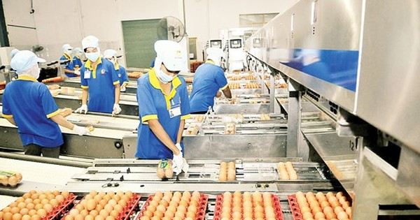 Goods quality, food safety not closely supervised in HCMC