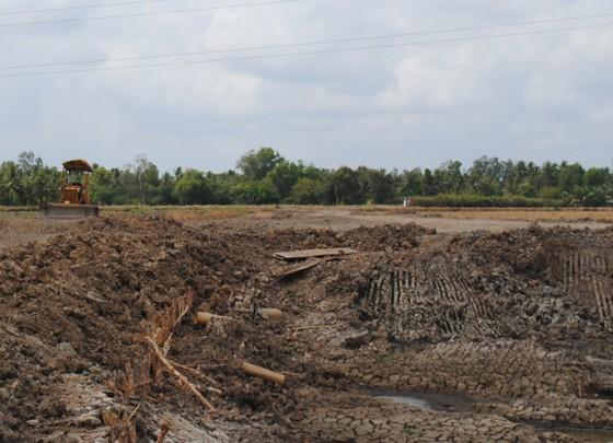 Cà Mau: Phạt nặng doanh nghiệp khai thác đất mặt trái phép và tịch thu xe tải ảnh 1