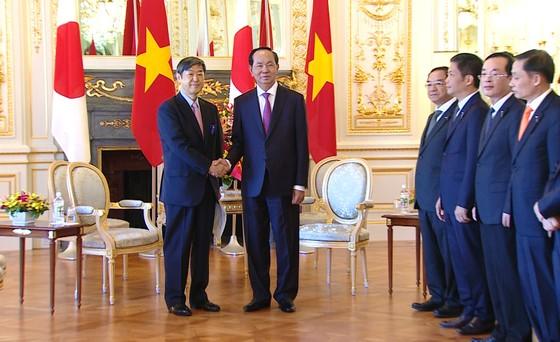 Chủ tịch nước Trần Đại Quang hội kiến với Chủ tịch Hạ viện Nhật Bản ảnh 3