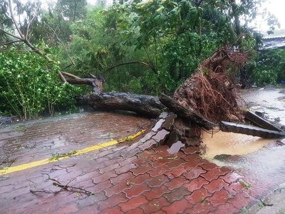 Bão số 9 khiến TPHCM mưa tầm tã không ngớt, nhiều đường ngập nặng ảnh 19