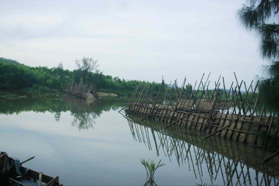 Vỡ 60m đập ngăn mặn trên sông Trà Bồng ảnh 1