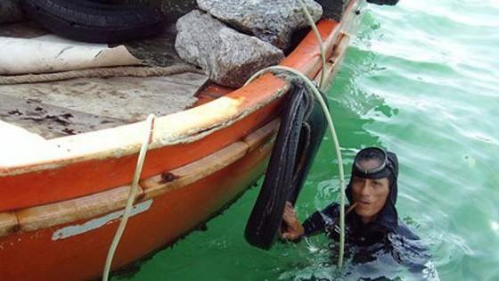 Hải sâm nuôi thử nghiệm tại đầm nước mặn đang phát triển tốt ảnh 2