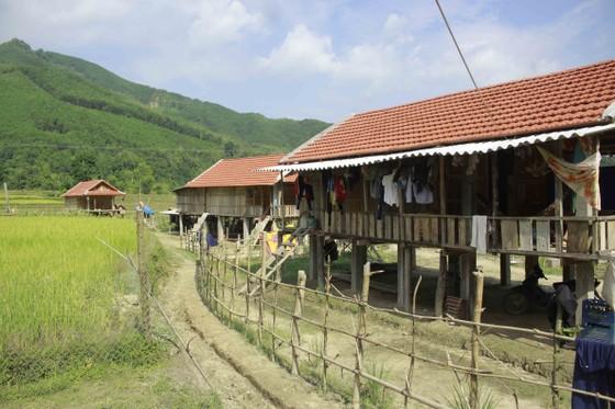 Quảng Ngãi: Dân vùng sạt lở vẫn chưa an cư ảnh 3