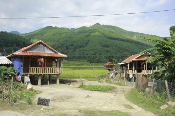 Quảng Ngãi: Dân vùng sạt lở vẫn chưa an cư ảnh 4