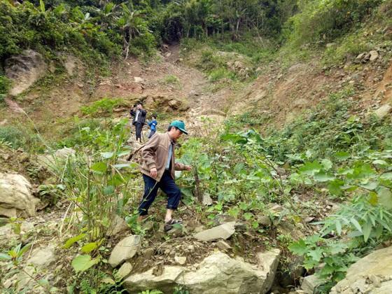 Quảng Ngãi: Nứt núi dài 100m, rộng 150m đe dọa trường học và nhà ở tại Ba Giang ảnh 1