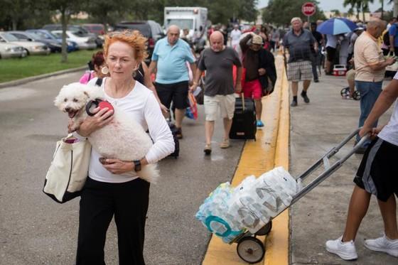 Siêu bão Irma tiến vào đất liền bang Florida của Mỹ ảnh 3
