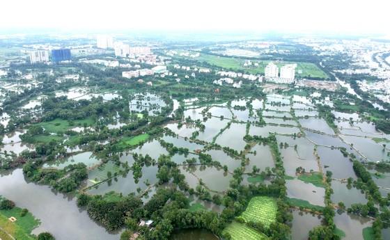 TPHCM chuyển đổi 26.000ha đất nông nghiệp: Thị trường bất động sản sẽ có biến động ảnh 1