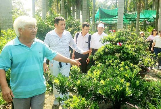 Du lịch nông nghiệp TPHCM gặp khó ảnh 1