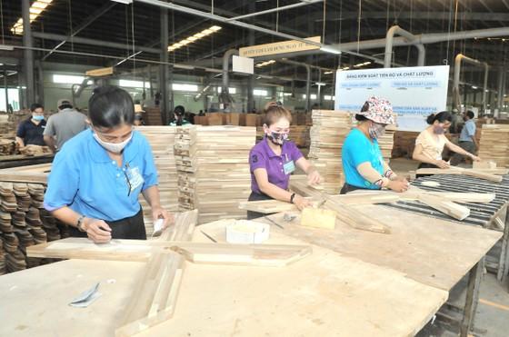 Việt Nam trước cơ hội trở thành trung tâm đồ gỗ nội thất thế giới  ảnh 2