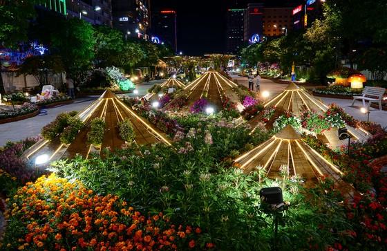 Cận cảnh đường hoa Nguyễn Huệ lung linh trước ngày khai mạc ảnh 8