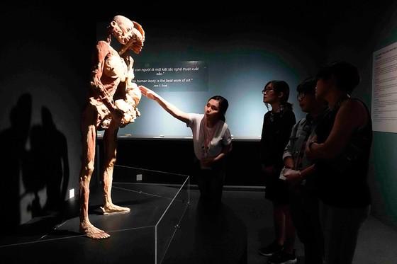 """Xung quanh triển lãm """"Sự bí ẩn đặc biệt của cơ thể người"""": Gây tranh cãi vì chưa có tiền lệ ảnh 1"""