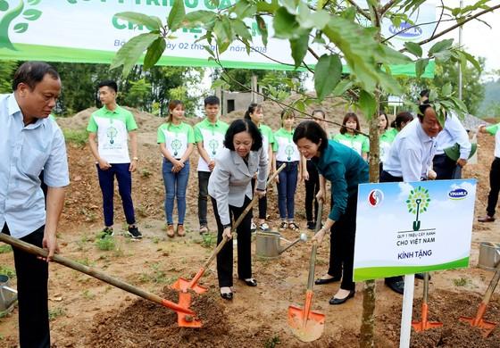Hơn 100.000 cây xanh được trồng tại Bắc Kạn ảnh 1