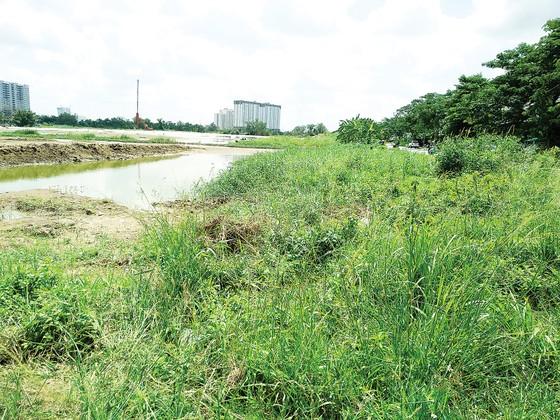 Điều chỉnh quy hoạch sử dụng đất hợp lý để tránh lãng phí, lấn chiếm trái phép…  ảnh 1