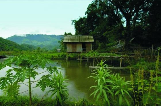 和平省梅州 —— 原始自然美 ảnh 4