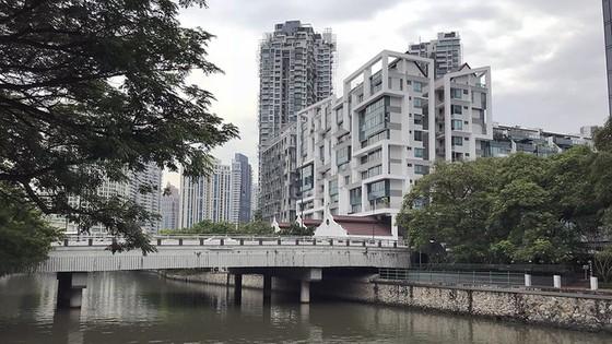 """新加坡有一座""""西貢島""""  ảnh 1"""