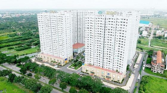 本市社會住房供求失衡 ảnh 1