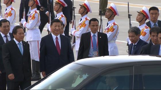 VIDEO: Chủ tịch Trung Quốc Tập Cận Bình đến Đà Nẵng ảnh 3