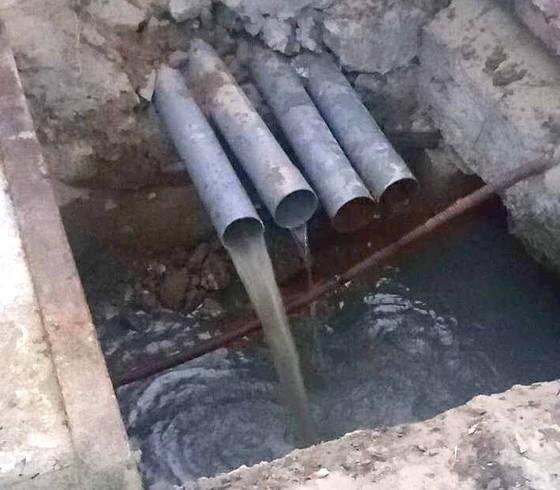 Đà Nẵng: Phát hiện Công ty Kim Long Nam xả nước thải ra biển  ảnh 1