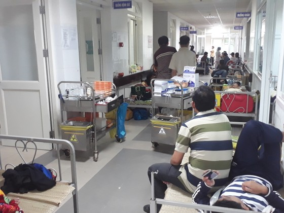 """Ngành giáo dục Đà Nẵng """"tổng tuyên truyền"""" phòng chống dịch sốt xuất huyết ảnh 1"""