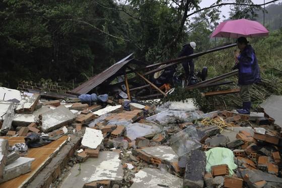 Lâm Đồng tan hoang sau bão 12 ảnh 2