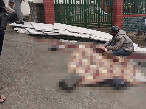 Hai người bị đè tử vong khi bốc dỡ vật liệu xây dựng ảnh 2