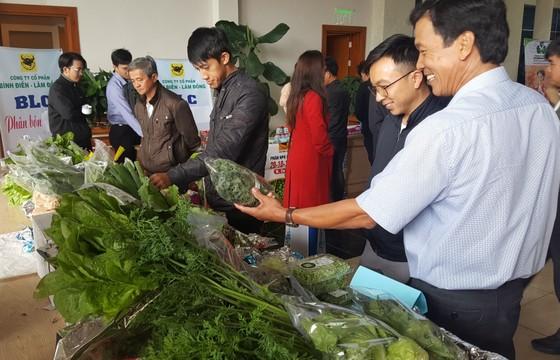 Phát triển sản xuất nông nghiệp hữu cơ theo hướng bền vững tại Lâm Đồng ảnh 2
