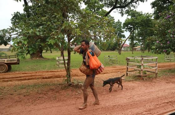 Lực lượng cứu hộ quốc tế đổ về Lào cứu trợ sau vụ vỡ đập thủy điện ảnh 13