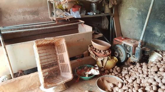 Bắt quả tang trộn đất vào khoai tây Trung Quốc để bán giá cao ảnh 5