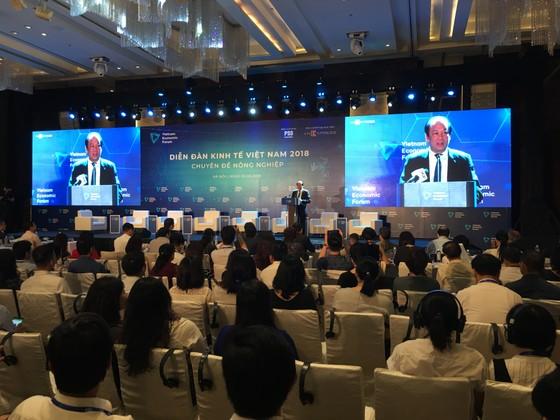 Bàn giải pháp phát triển thương mại cho nông sản Việt ảnh 1