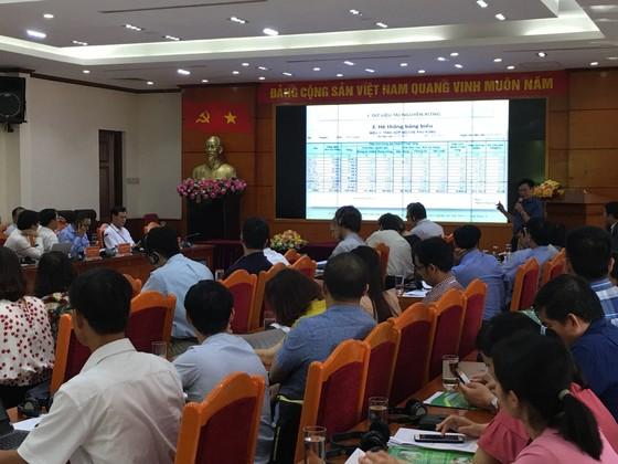 Không thể nói dối về thực trạng rừng Việt Nam ảnh 2