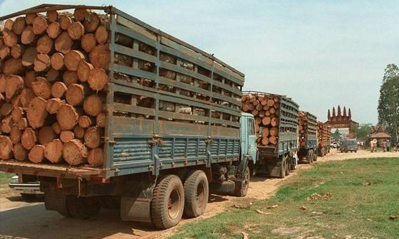 Đồ gỗ xuất siêu 3,52 tỷ USD ảnh 2