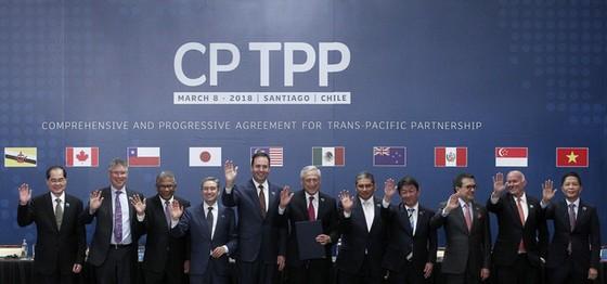 Việt Nam chính thức tham gia CPTPP từ hôm nay ảnh 1