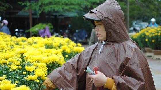 Người dân Cố Đô đội mưa đi chợ hoa Tết ảnh 4