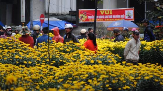 Người dân Cố Đô đội mưa đi chợ hoa Tết ảnh 1