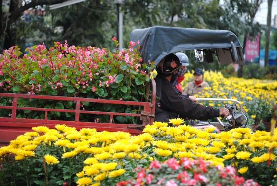 Người dân Cố Đô đội mưa đi chợ hoa Tết ảnh 3