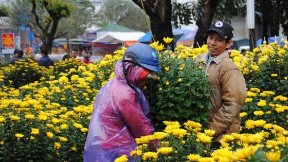 Người dân Cố Đô đội mưa đi chợ hoa Tết ảnh 2
