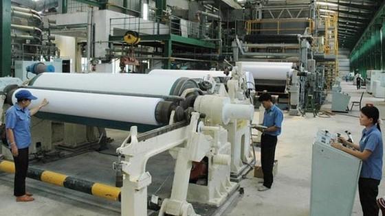 Tập đoàn Tân Mai đầu tư nhà máy mới và phát triển vùng nguyên liệu ảnh 1