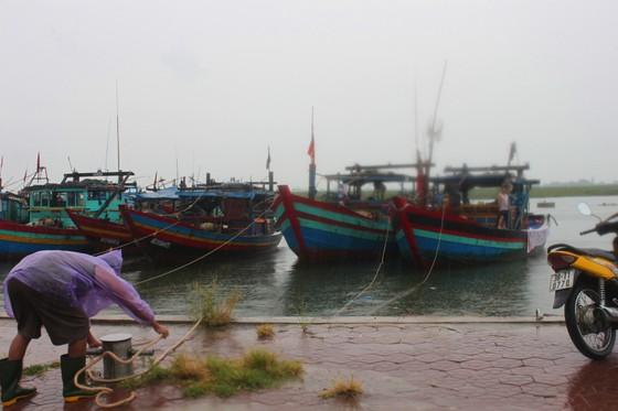 Quảng Bình: Còn 177 tàu thuyền hoạt động trên biển ảnh 1