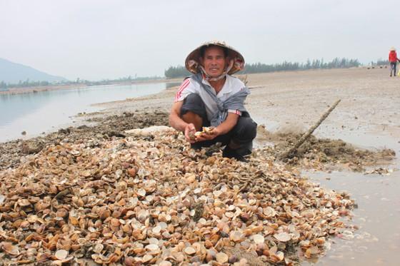 Nghêu nuôi chết hàng loạt ở Hà Tĩnh là do ảnh hưởng thời tiết ảnh 2