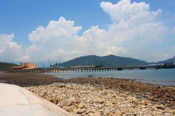 Nắng nóng gay gắt kéo dài ở Hà Tĩnh, nguy cơ cháy rừng cao  ảnh 8