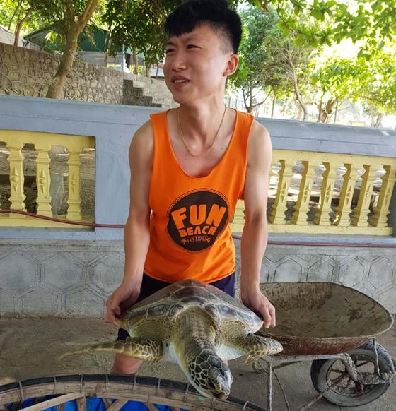 CLIP: Thả rùa biển 40kg về lại môi trường tự nhiên ở Hà Tĩnh ảnh 1