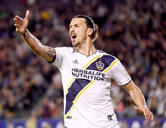Zlatan Ibrahimovic đang bận thi đấu cho Los Angeles Galaxy trong dịp World Cup này. Ảnh: Getty Images