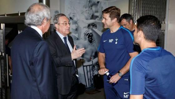 Cầu thủ Tottenham lo mất Pochettino ảnh 1