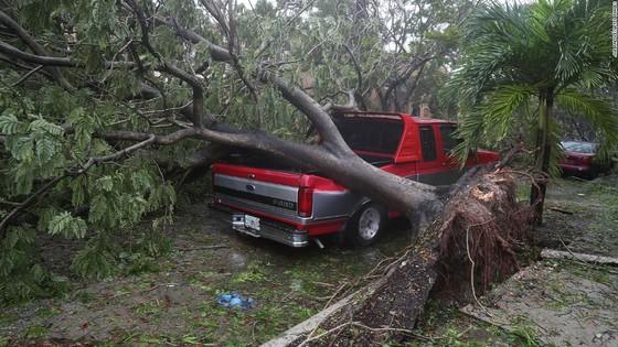 Florida tan hoang sau bão Irma ảnh 1