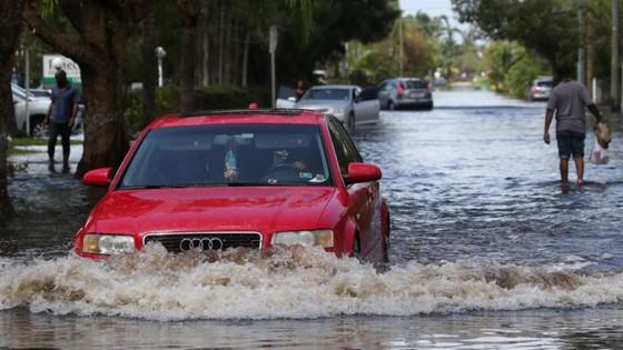 Florida tan hoang sau bão Irma ảnh 17