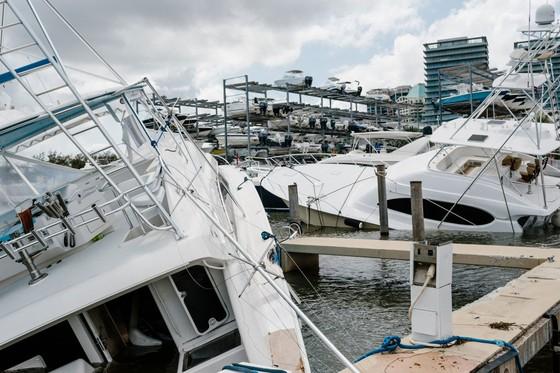 Florida tan hoang sau bão Irma ảnh 3
