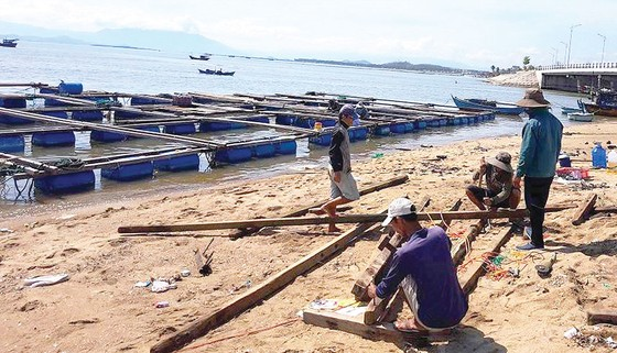 Nông dân miền Trung chuẩn bị vào mùa sau lũ bão ảnh 6